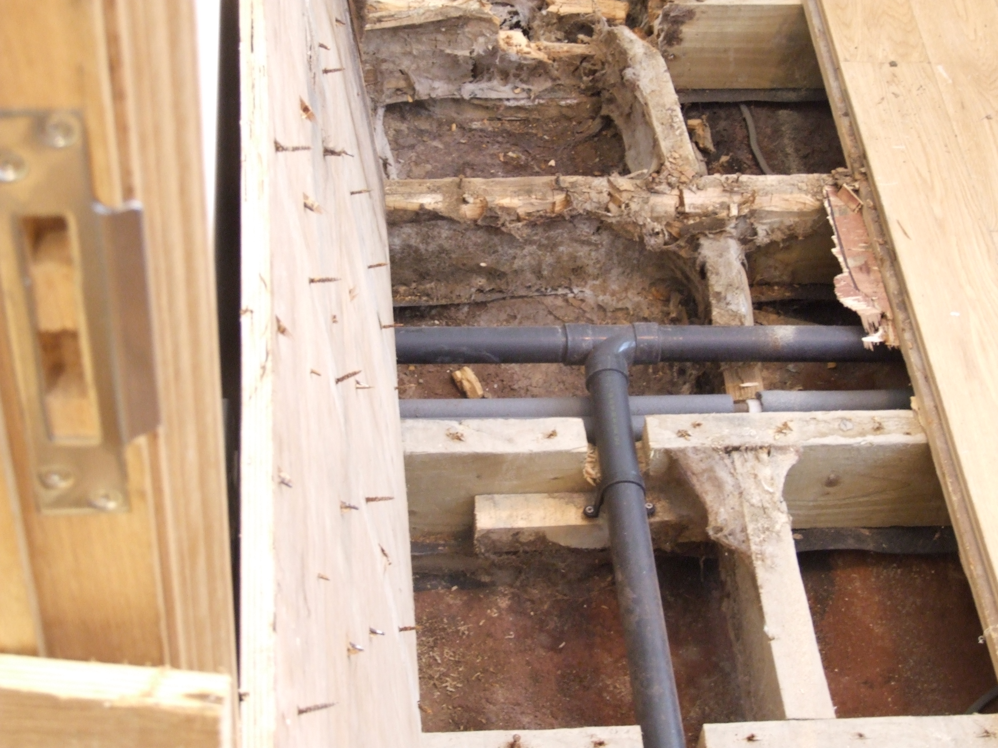 Atics Ltd | ALL TIMBER INFESTATION AND CONSULTANCY SERVICES LTD.